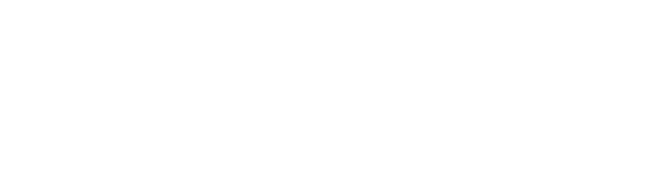 Vintage Community